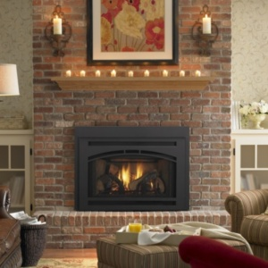 Fireplace Inserts - Gas  Wood Burning | FireplacesNow.com