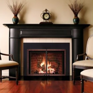 Photo Of Mendota FV44i Gas Fireplace Insert - NW Natural Appliance Center