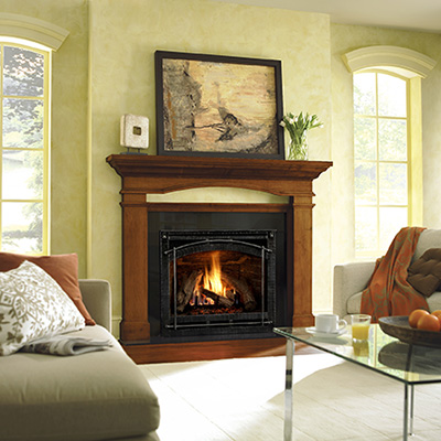 Heat & Glo-6000CLX Zero Clearance Fireplace - Zero Clearance Fireplaces And Accessories - Portland, OR - NW