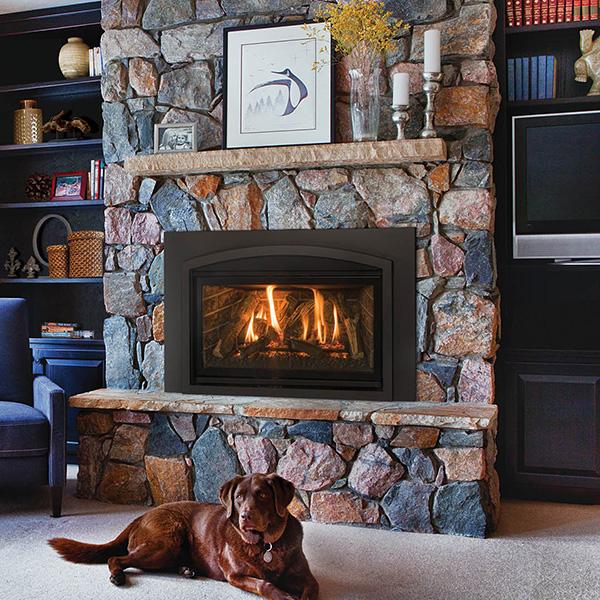 Kozy Heat Gas Fireplace Inserts Portland Or Nw